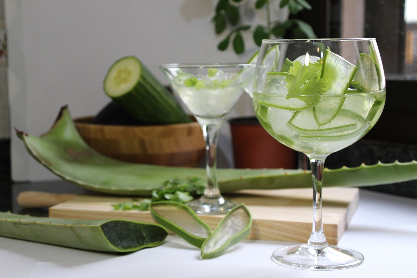 Can we lose weight with Aloe vera?