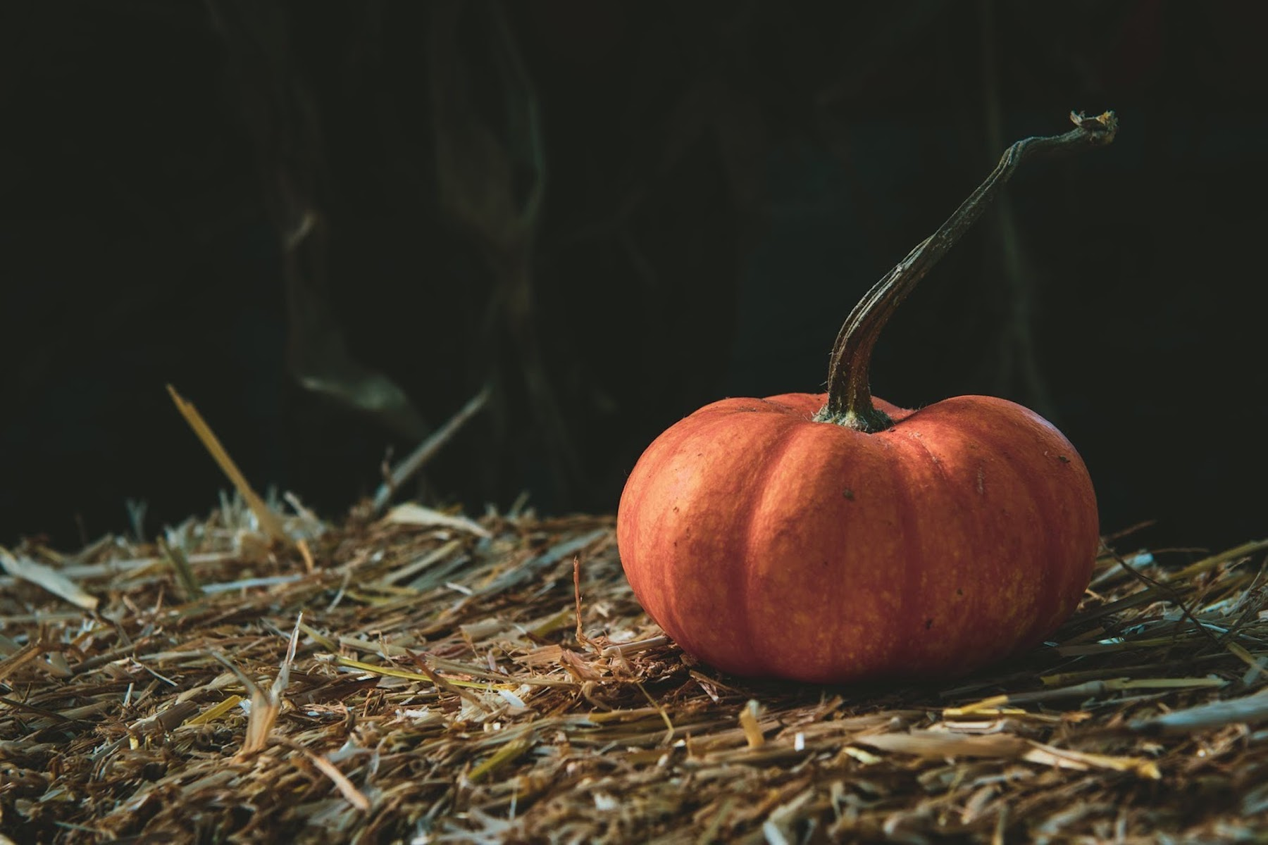 Properties of the pumpkin on the skin